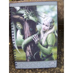49270 CAHIER BLOC NOTE AMES SOEURS HEROIC FANTASY COLLECTION ANNE 30%